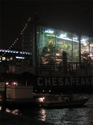 Baltimore Aquarium , MD - August 2006
