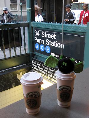 Starbucks New-yorkais