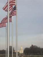 Le Capitole, vu du Washington Memorial
